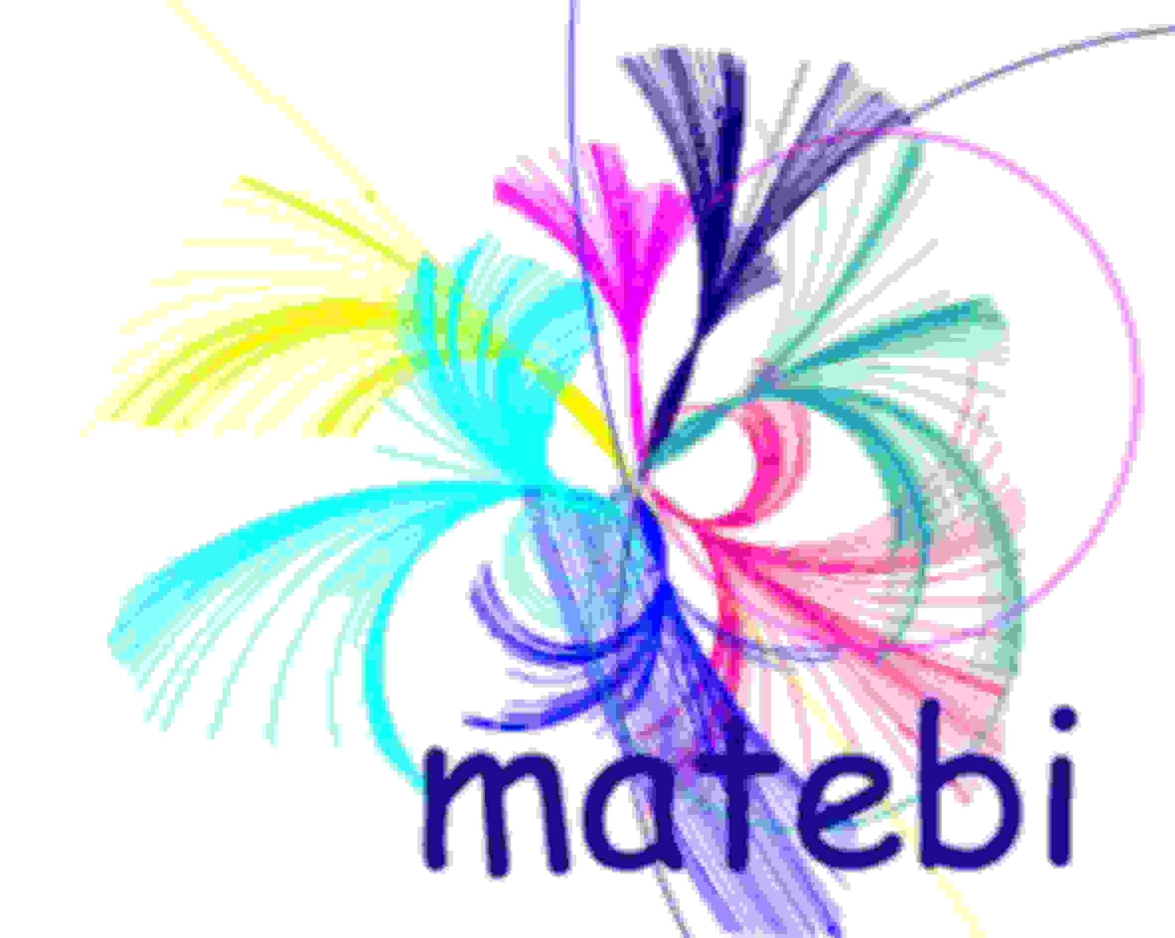 logo matebi