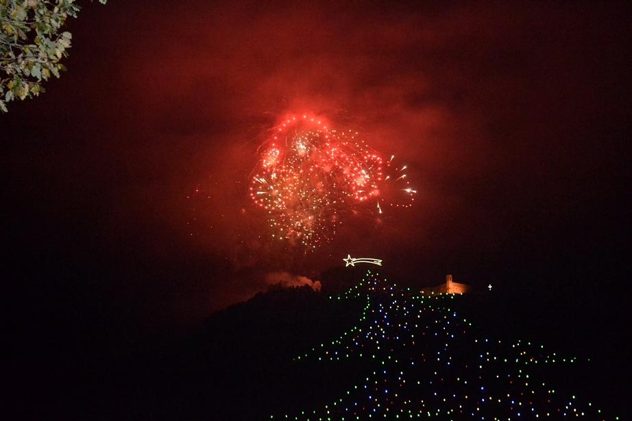 Albero di Gubbio 2012
