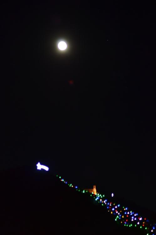 Luna piena e albero