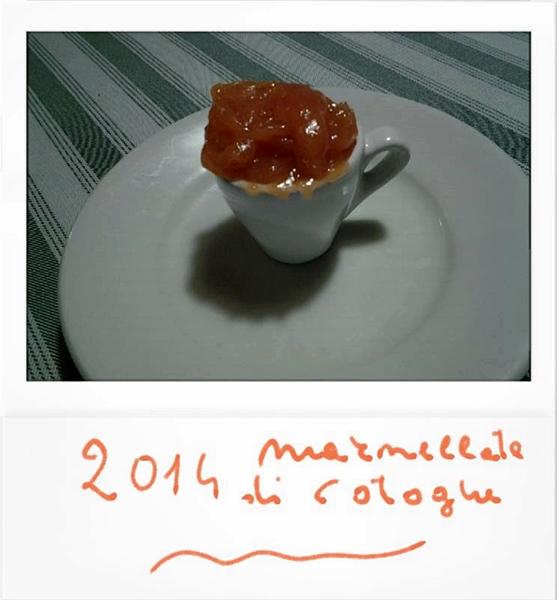 cotogne 2014